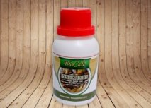 jual insektisida untuk mencegah kumbang penggerek kayu